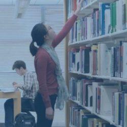 bibliotekerne